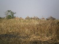 Togo Kande Or Kante