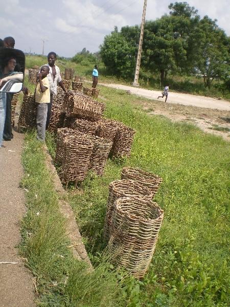 Teen girls in Sokode